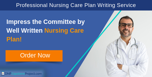 quality nursing care plan writing